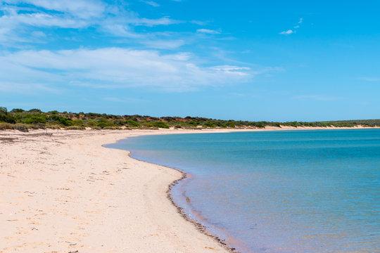 Empty long beach at Shark Bay in Western Australia