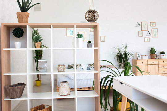 Cozy interior design of modern studio apartment in Scandinavian style. A spacious huge room in light colors with green plants and stylish expensive luxury furniture.