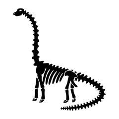 dinosaur skeleton diplodocus.