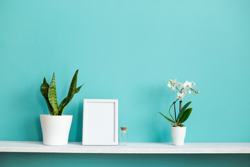 Modern room decoration with Picture frame mockup. White shelf against pastel turquoise wall with potted orchid and snake plant.