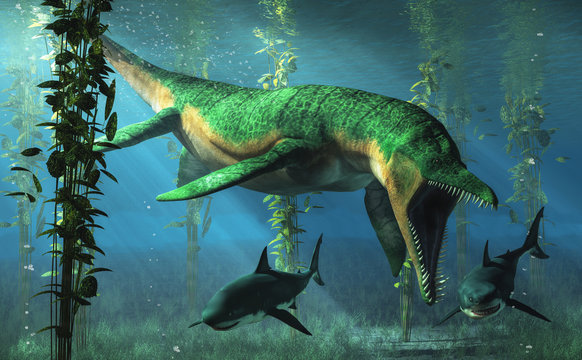 Liopleurodon was a pliosaur and apex predator of the Jurassic seas. Here, the green sea monster hunts sharks in shallow waters in a kelp forest.