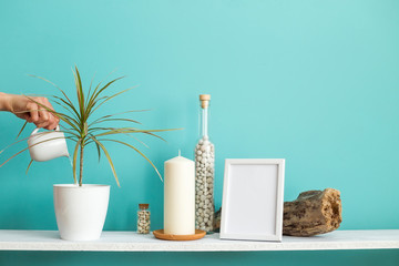 Modern room decoration with Picture frame mockup. White shelf against pastel turquoise wall with Candle and rocks in bottle. Hand watering potted dracaena plant
