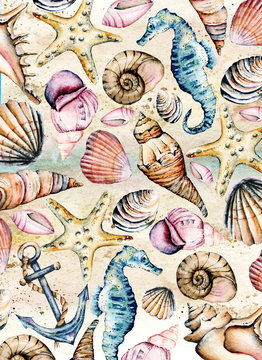 Seashells paper, marine background. Watercolor seahorse, starfish and other shells. Travel, beach design. Hand drawing.