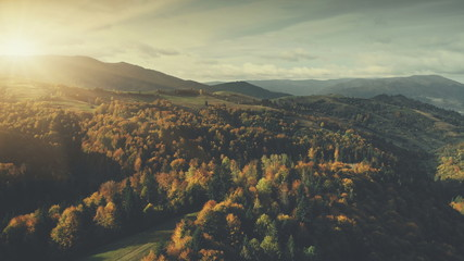 Sunset Forest Hill Surface Aerial View Landscape. Panoramic Mountain Slope. Thick Dense Wood Wildlife Nature Scenery Overview. Clean Ecology Natural Environment Concept. Drone Flight