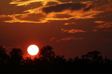Deurstickers Rood paars Sonnenuntergang Krüger Park / Sundown Kruger Park /