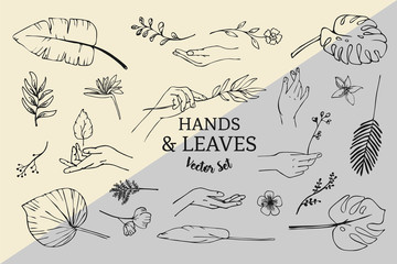 Vector Set of hand drawn line art plants, leaves and hands logo elements.