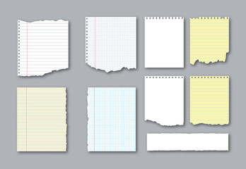 Set of different notebook torn pages and pieces of ripped paper for notes. Vector illustration  Wall mural