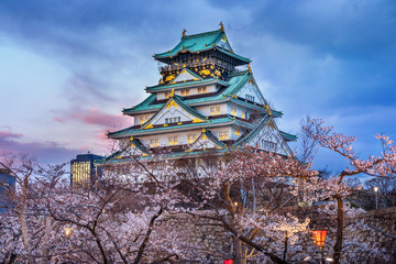 Wall Mural - Osaka Castle and Cherry blossom in spring. Sakura seasons in Osaka, Japan.