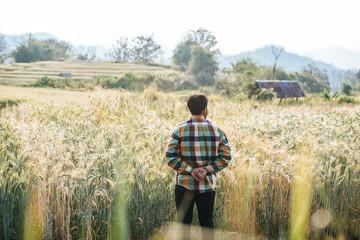 Handsome man farmer with barlay field