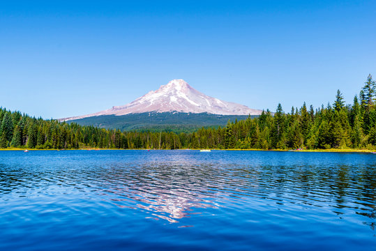 Landscape of the picturesque Trillium Lake surrounded by forest overlooking Mount Hood and the reflection of snowy mountain in the clear water of the lake