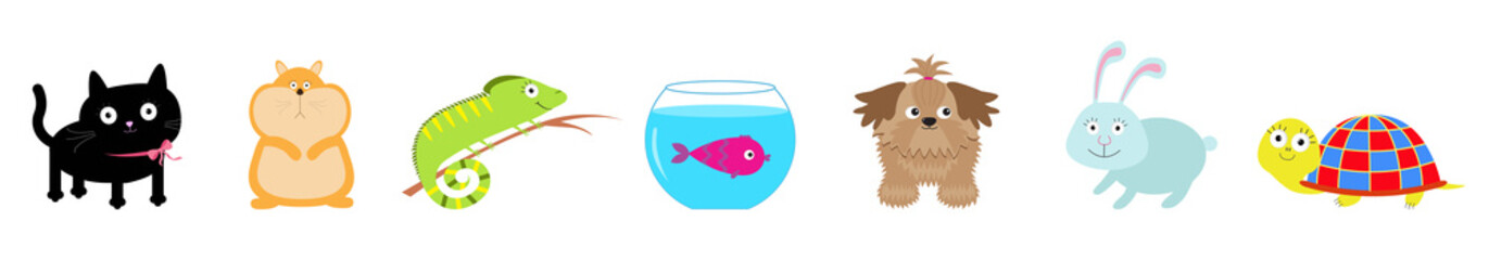 Pet set line. Cat, dog, fish aquarium, hamster, iguana, turtle, rabbit hare. Cute cartoon kawaii funny character. Flat design White background.