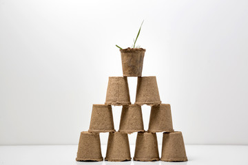 Disposable garden paper cups. Top view over white background.