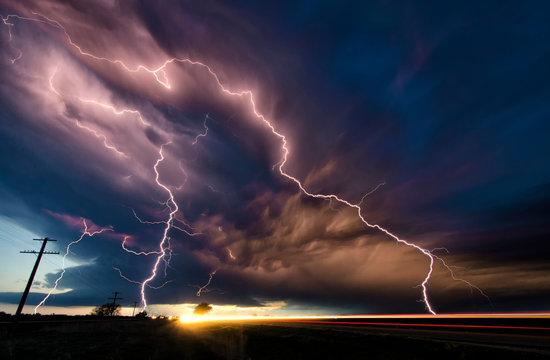 Lightning Dog