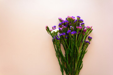 Bouquet of sea lavender flowers (Limonium) lying on pink background. Top view. Copy space
