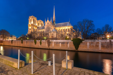 Fototapete - Cathedral of Notre Dame de Paris at night, France