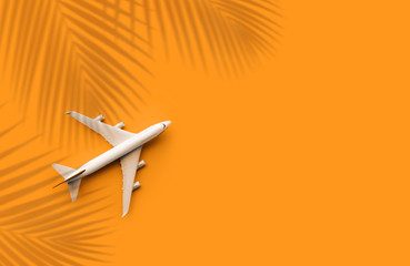 Model plane,airplane with coconut leaf on pastel color background.Trip journey and holiday summer concepts Wall mural