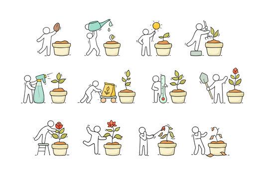 little people growing plant