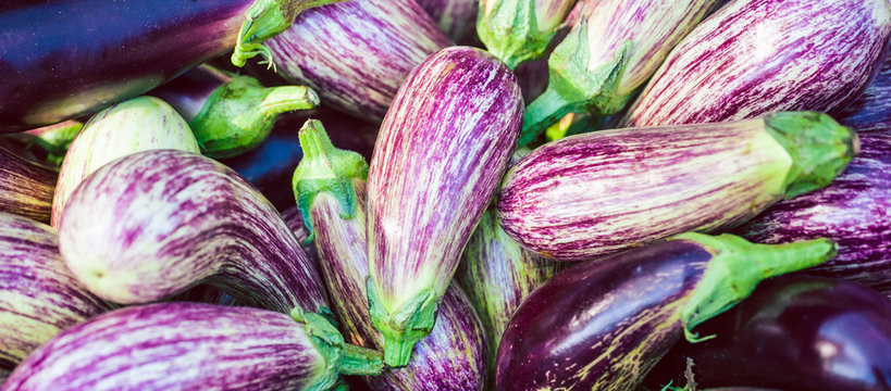 Striped eggplants on the market counter.