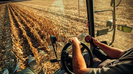 Wall Mural - Farmer in machine harvesting corn