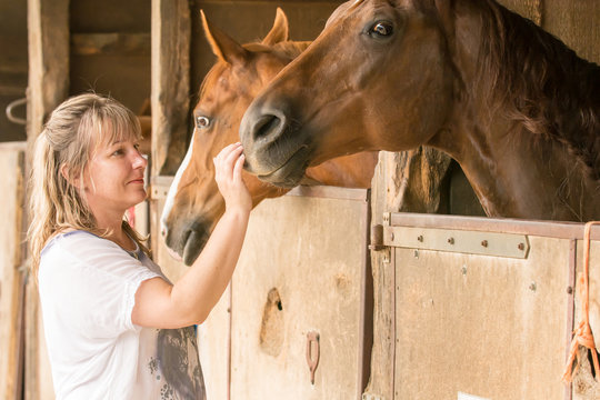 A blond woman is standing in front of a wooden horse stable. Two horses stick their heads out. The woman cautiously strokes the horse nostril.