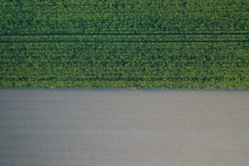 Feld Ackerbau mit Musterung Draufsicht von oben