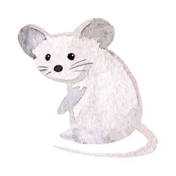 Watercolor cute mouse. Isolated on white background. Woodland animal. Hand drawn illustration. Design for children clothing