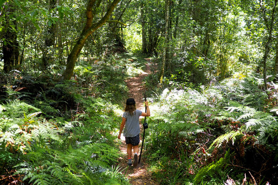 Young child walking down a lush forest path