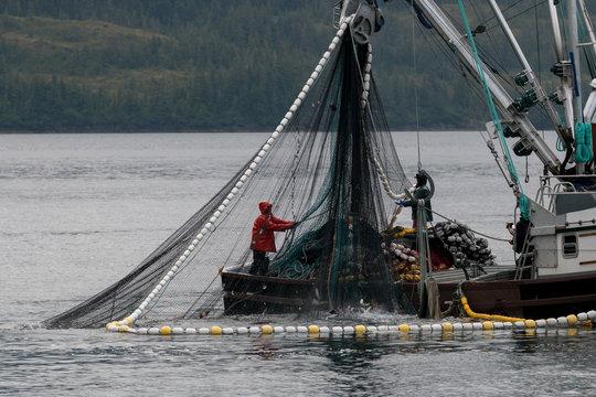 サケ漁をする漁船 アラスカ