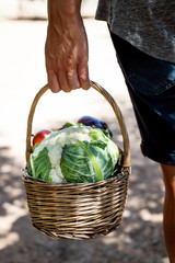 young man with a basket full of vegetables