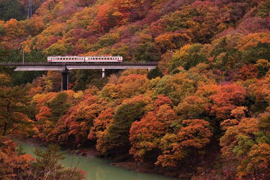 栃木県、川治温泉の紅葉と野岩鉄道