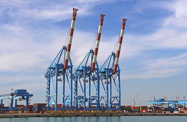 Genoa harbor: cranes and containerport