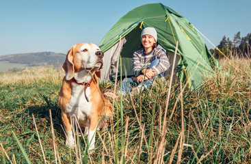 Poster Camping Woman in her beagle dog meet morning in touristic camping tent