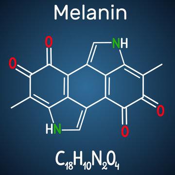 Melanin  molecule. Structural chemical formula and molecule model on the dark blue background