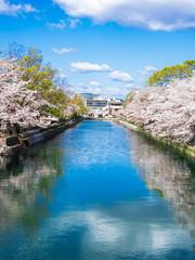 京都 琵琶湖疏水 縦位置