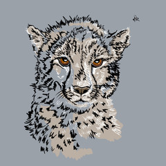 Foto op Canvas Hand getrokken schets van dieren Sketch of a Leopard head on gray background. Hand drawn vector illustration.