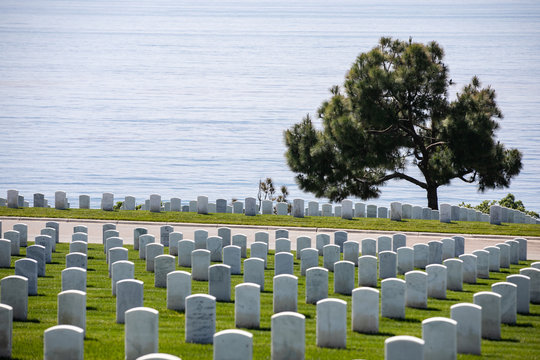 military cemetery next to ocean