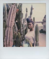 Beautiful woman looking at  the camera through Cactus