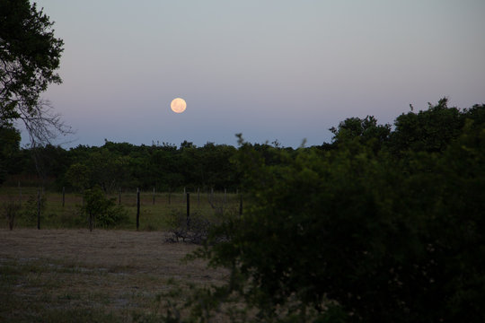 Lua surgindo