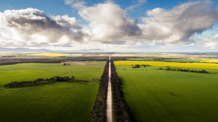 A dirt rural road leads off into the distance surrounded on both sides by lush fertile green farming countryside on a fair weather day Wall mural