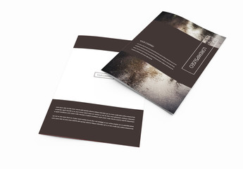 Bifold Brochure with Dark Brown Elements