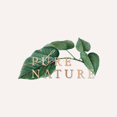Pure nature wallpaper