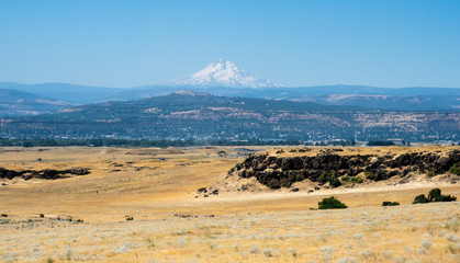 Farmlands in Columbia River Gorge with Mount Hood on the background - Oregon, USA