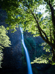 Horsetail Falls in Columbia River Gorge, Oregon, USA