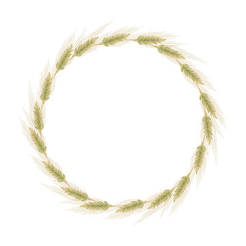 Ears of barley, wheat or rye. Round wreath isolated on white background. Vector illustration of bread cereals in cartoon flat style.