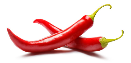 Canvas Prints Hot chili peppers Two red chili peppers, isolated on white background