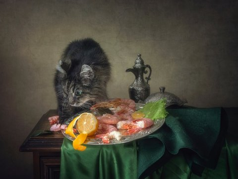 Still life with bouquet of flowers and adorable tabby old cat
