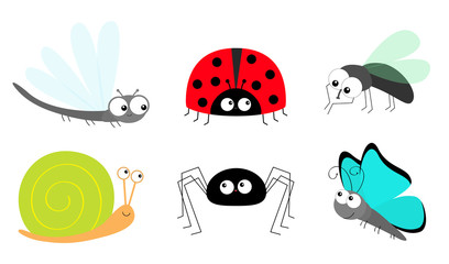 Lady bug ladybird Fly Housefly Spider Butterfly Dragonfly Snail insect icon set. Baby kids collection. Cute cartoon kawaii funny character. Smiling face. Flat design. White background.