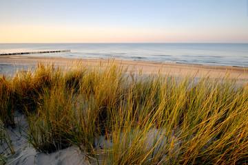 Wydmy na wybrzeżu Morza Bałtyckiego,Kołobrzeg,Polska.