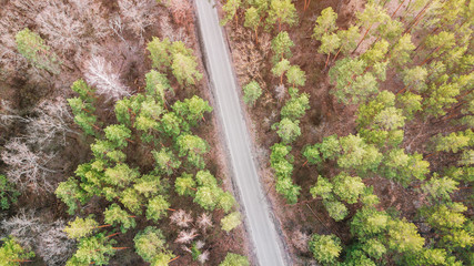 aerial veiw of empty road in green forest. drone shot