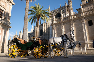 Horse and carriage outside seville cathedral